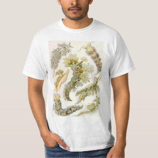 VintageNudibranchia, havskulor av Ernst Haeckel Tshirts