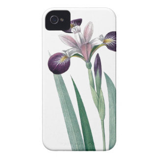 VintageRedoute för Iris tricolor illustration iPhone 4 Case-Mate Fodral