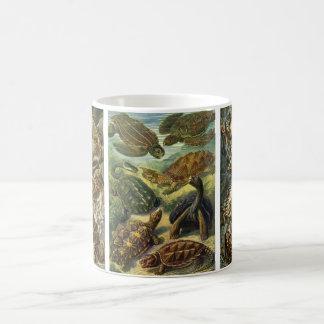 Vintagereptilar och amfibier av Ernst Haeckel Vit Mugg