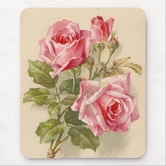 Vintagerosa ros musmatta