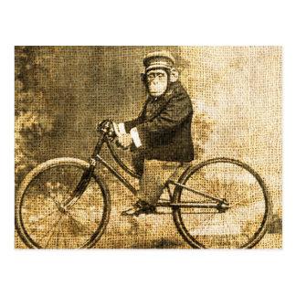 Vintageschimpans på en cykel vykort