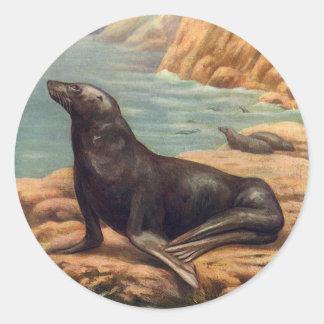 Vintagesjölejon vid seashoren, marin- däggdjur runt klistermärke