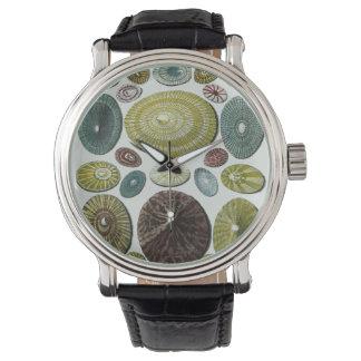 Vintagesnäckor Armbandsur