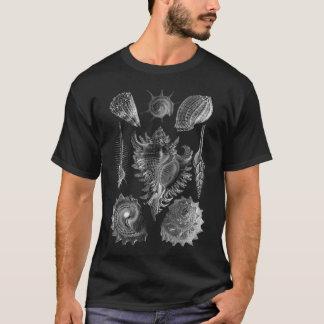 Vintagesnäckskalsvart Tee Shirt
