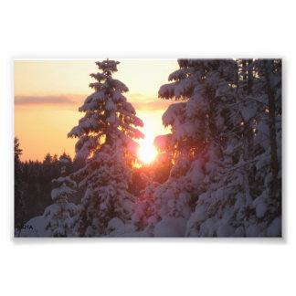 Vinter Fotografiska Tryck