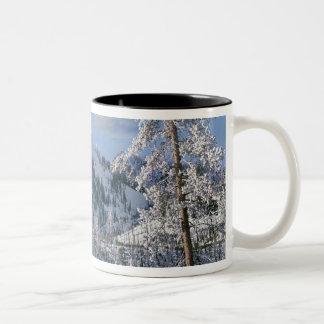 Vinter i den Yellowstone nationalparken, Wyoming Två-Tonad Mugg