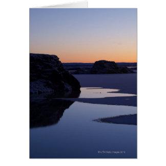 Vinter sjö Myvatn, island Hälsningskort