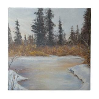 Vinterdamm landskap belägger med tegel kakelplatta