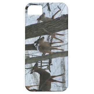 vinterhjort iPhone 5 hud