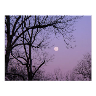 Vintermåne Print