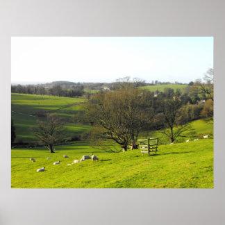 Vintern landskap nära charden i Somerset Poster