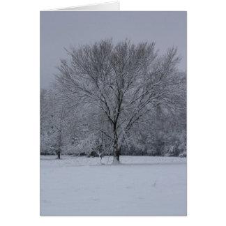 Vinterplats Hälsningskort
