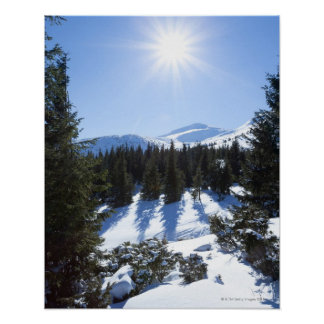 Vintersol 5 poster