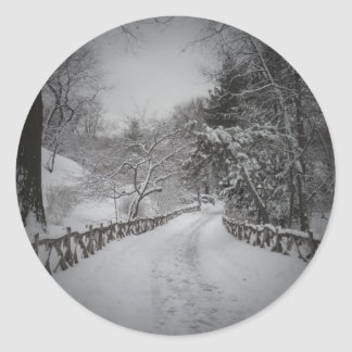 Vinterunderland, Central Park, New York City Runt Klistermärke