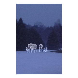 VintervargLuminosity Brevpapper