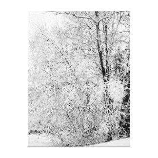 Vinterviter Canvastryck
