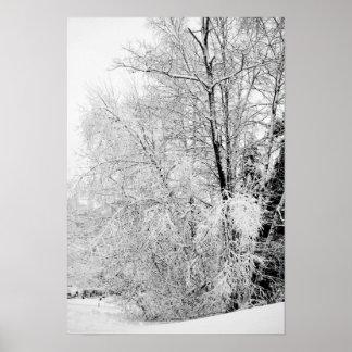 Vinterviter Poster
