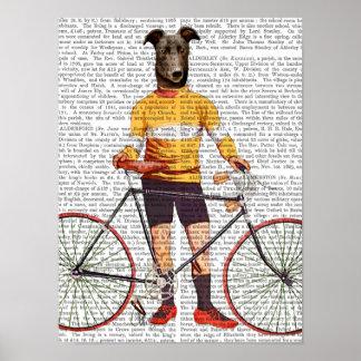 Vinthundcyklist Poster
