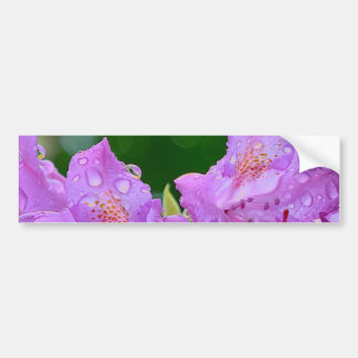Violett blomma bildekal