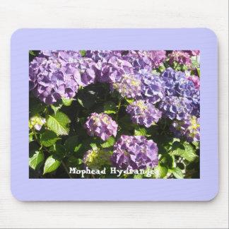 Violett och purpurfärgad vanlig hortensia musmatta