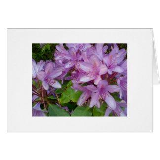 Violetta blommor hälsningskort