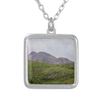 Virvlad runt skönhet i Denali Silverpläterat Halsband