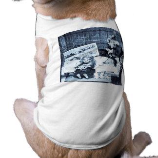 Visioner av sockerplommoner 2 - vintage Stereoview Husdjurströja