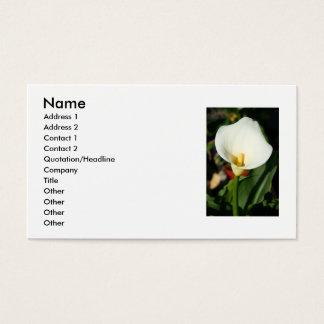 Visitkort för Cala liljablomma