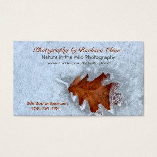 Visitkortar med ett handlag av Natur-snö arbete Visitkort
