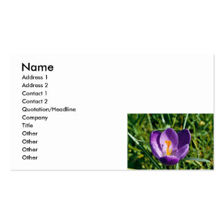 Visitkortar - purpurfärgad krokusblomma set av standard visitkort