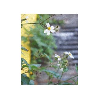 Vit blommar väggkonstsavannahen GA Canvastryck