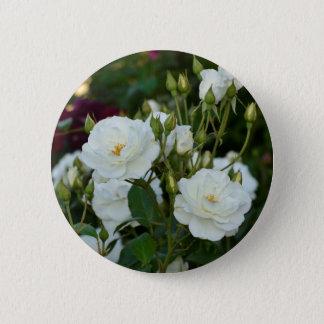 Vit ros med grön bakgrund standard knapp rund 5.7 cm