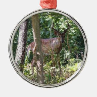 Vit-tailed hjort julgransprydnad metall