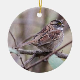 Vit-throated Sparrow Julgransprydnad Keramik