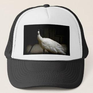 VitAlbinopåfågel Keps