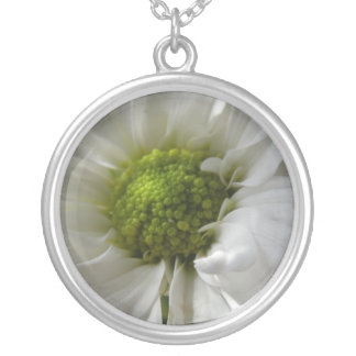 VitChrysanthemumhalsband Silverpläterat Halsband