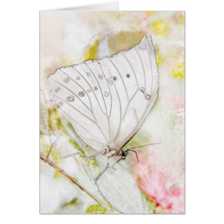 White Butterfly Watercolor