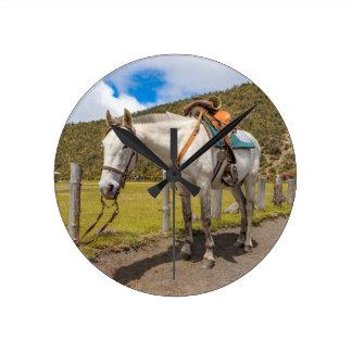 Vithäst som binds upp på den Cotopaxi Rund Klocka