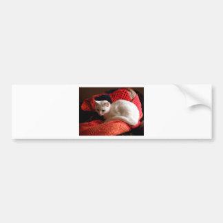 vitkatt på för virkningsticka för orang den röda f bildekal