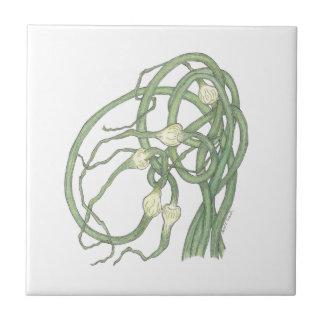 Vitlök Scapes (sativa Allium) belägger med tegel Kakelplatta