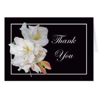 VitRhododendronblomma, tack Hälsningskort