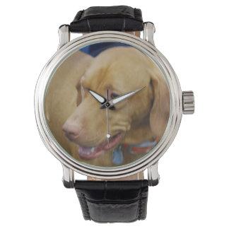 Vizsla hund armbandsur