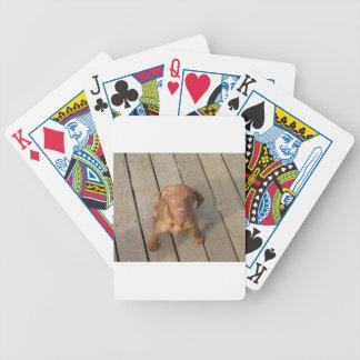 vizslavalp spelkort