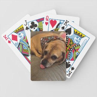 Vovve-leka kort för dåliga spelkort