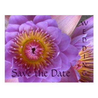 Vykort för lotusblommablommabröllop spara datum