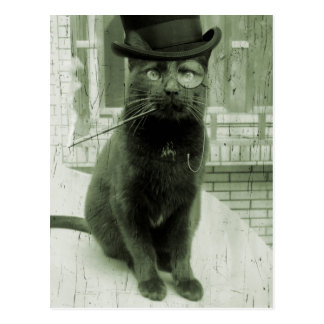 Vykort för vintageSteampunk LOL rolig katt