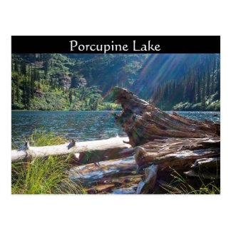 "VYKORT~ ""Porcupine sjön"" nära Clark dela sig, Vykort"