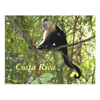 VykortCapuchinapa Costa Rica Vykort