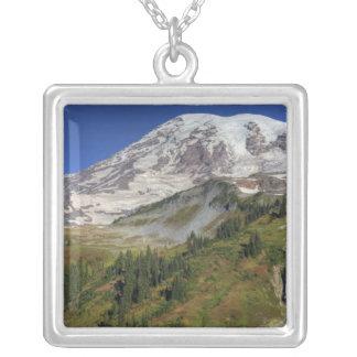 WA den Mount Rainier nationalparken, beskådar från Silverpläterat Halsband
