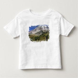 WA den Mount Rainier nationalparken, beskådar från T-shirt